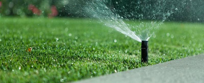 giardino con impianto di irrigazione a goccia