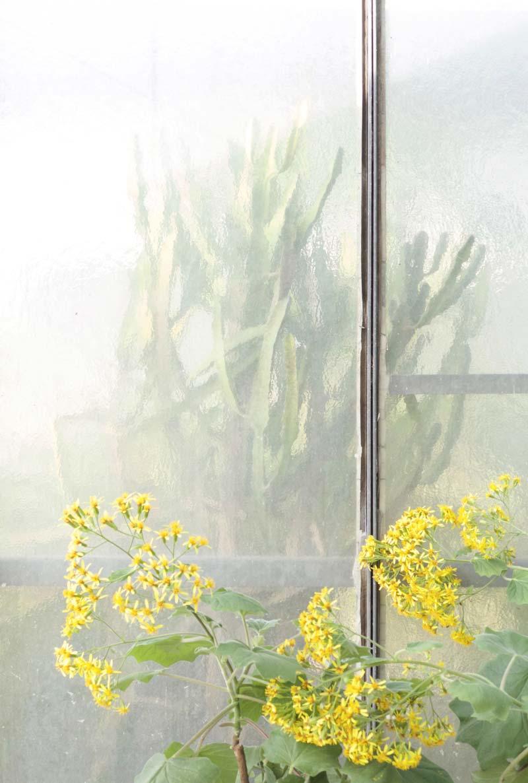 opera d'arte in mostra alla Galleria Antonia Jannone