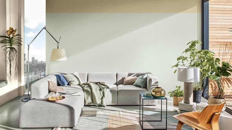 parete living color tranquil dawn