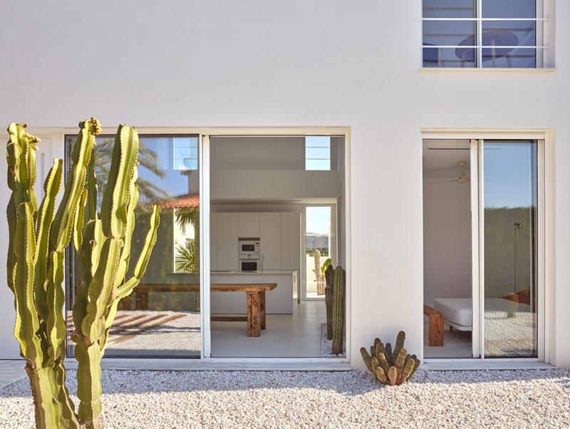giardino con cactus